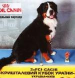 cacib_kiev.jpg